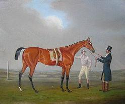 eleanor_horse